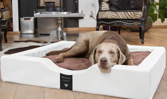 Entspannung pur für unsere Hunde!
