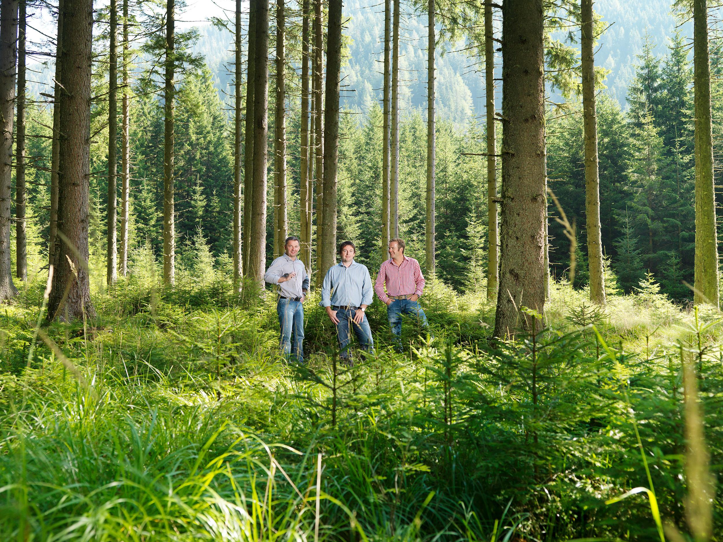 Familienbetrieb Pabst: Brettschichtholzkompetenz aus #xD6sterreich