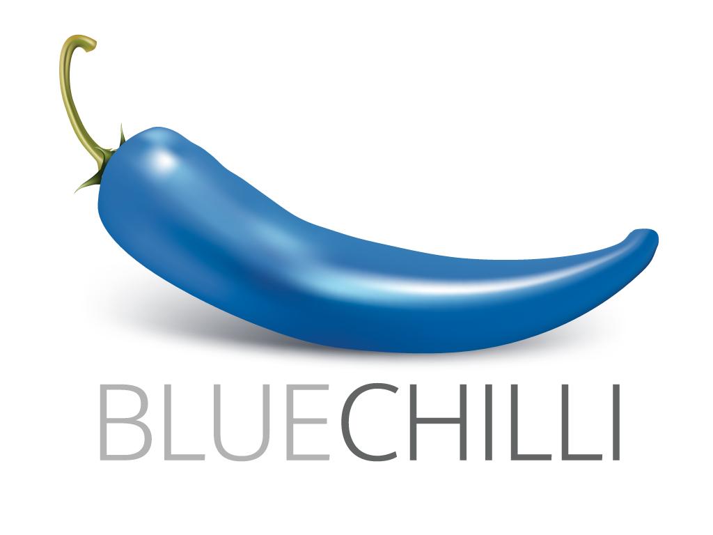 Blue Chilli GmbH - ein neues Start-up in M#xFCnchen