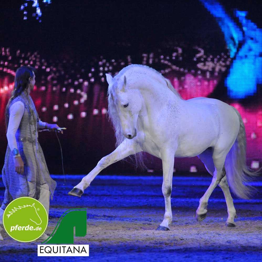 Pferde.de ist erneut Medienpartner der EQUITANA