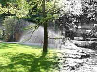 Verkehrssicherheit und gepflegter Baum und Garten