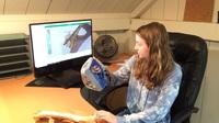 Modernste 3D-Scantechnologie von Artec 3D verhilft zur Entwicklung des weltweit ersten Virtual-Reality-Kurses über menschliche Osteologie