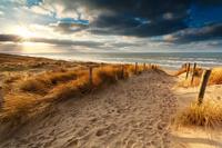 Baugrundstücke Insel Rügen direkt am offenen Meer Verkauf Ohne Courtage Ohne Bauträgerbindung BESTLAGAGE Nur noch 7 Baugrundstücke vorhanden