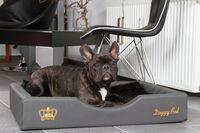 Optimale Hundebetten mit gesunden Liegenflächen
