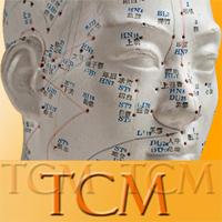 Zertifizierte Ausbildung in TCM / Akupunktur
