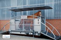 Das Sascotec Pferdelaufband ist online! Horse2x